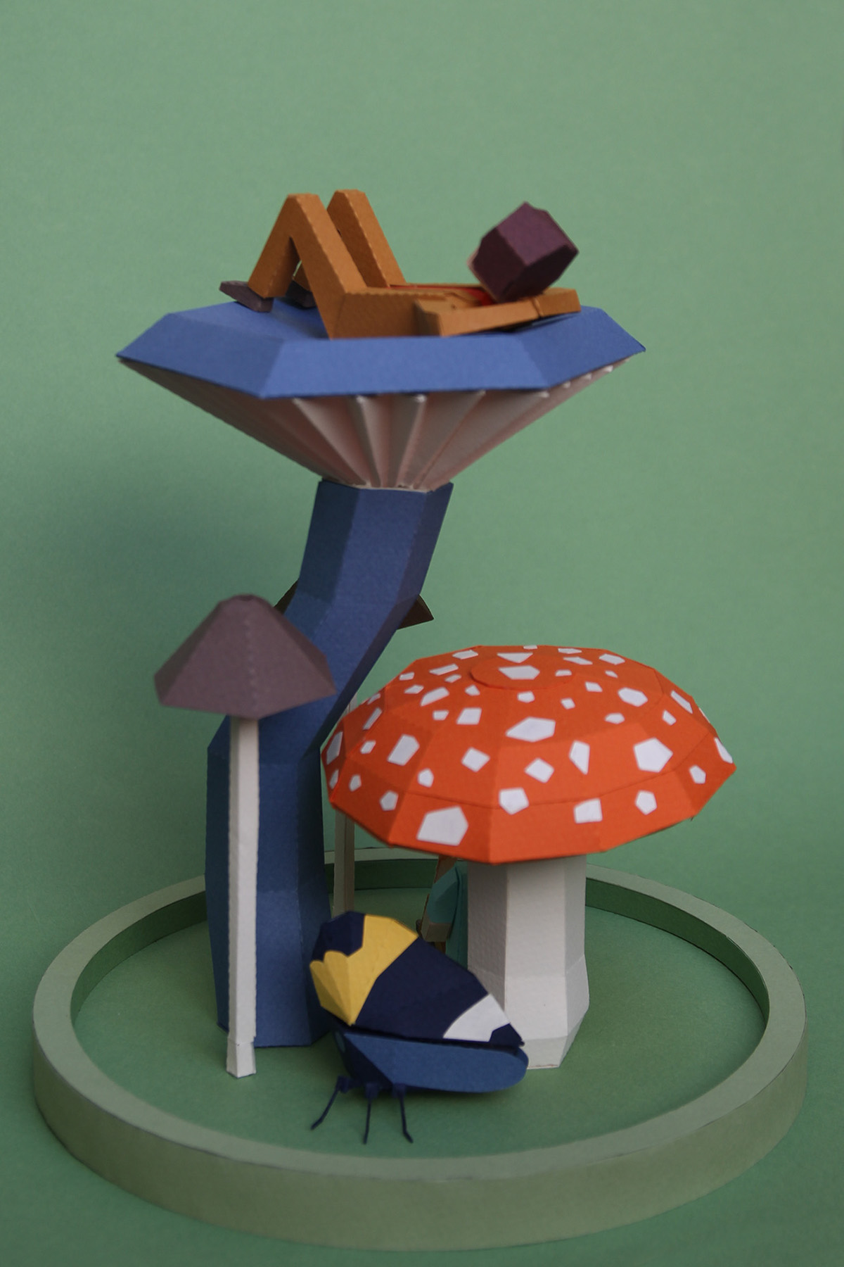 papercraft,lowpoly,david attenborough,carl sagan,audubon,grizzly man,Fungi,Exhibition ,Home Hotel,Diorama