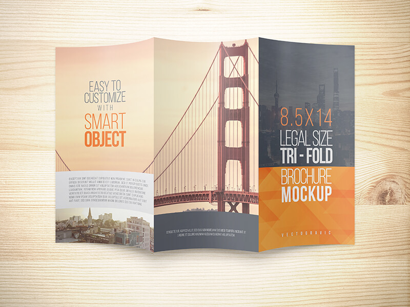 8.5 X 14 Legal Trifold Brochure Mockups On Behance