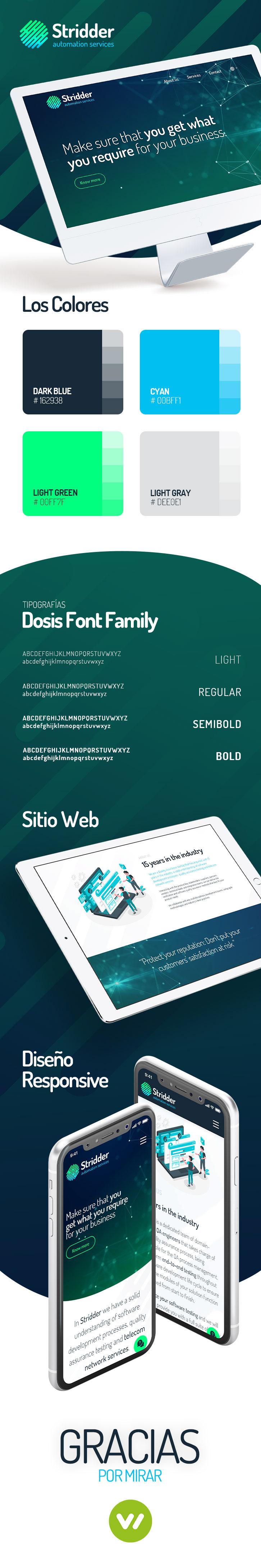 Micro sitio web profesional