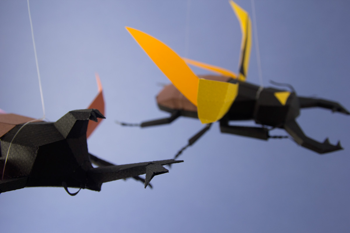 20songs escarabajos insectos beetles Insects rhino beetle papercraft kids Flying allomyrina odontolabis