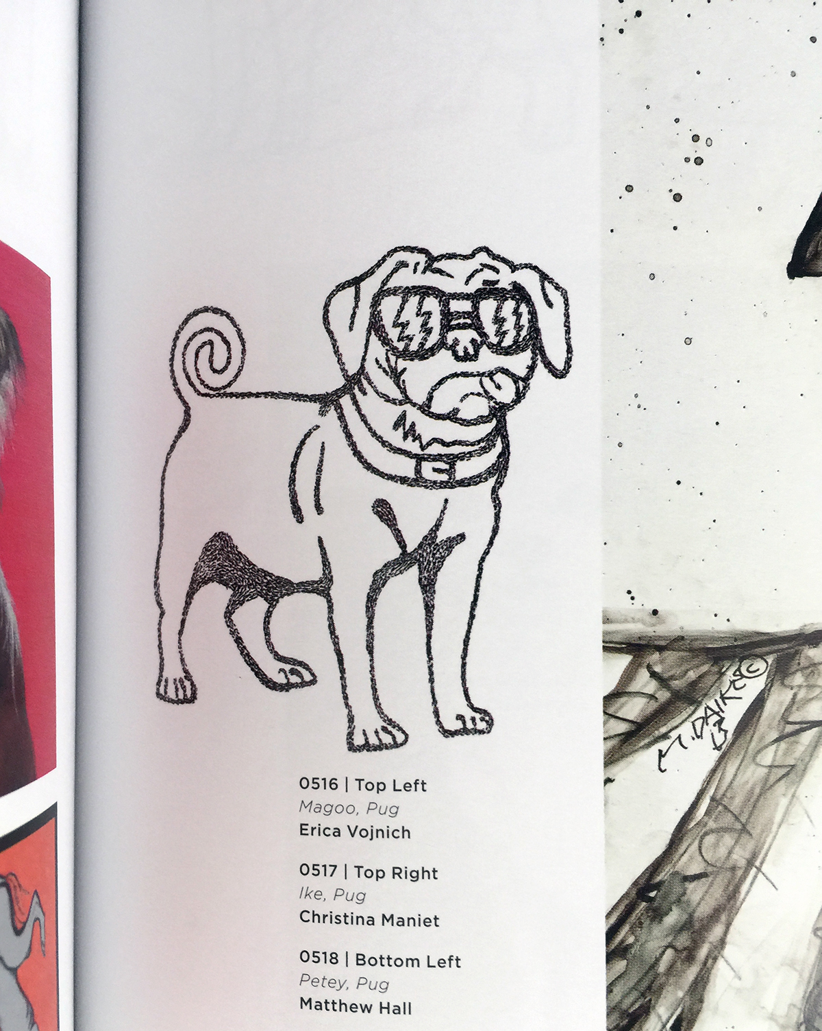 Featured in 1,000 Dog Portraits: From the People Who Love Them, by Robynne  Raye, published April 15, 2014.