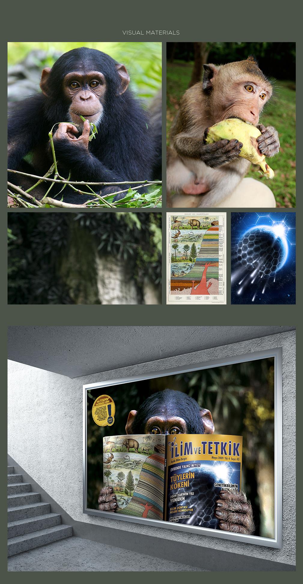 dergi şart retouch magazine print ad lion monkey