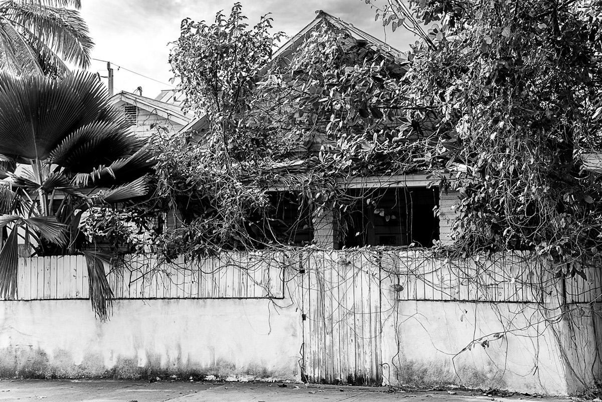 florida black and white Street fine art