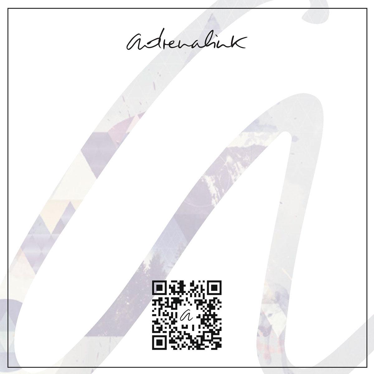 Adrenalink,André Theubet,Web International School,wis,carte de voeux,Voeux 2016