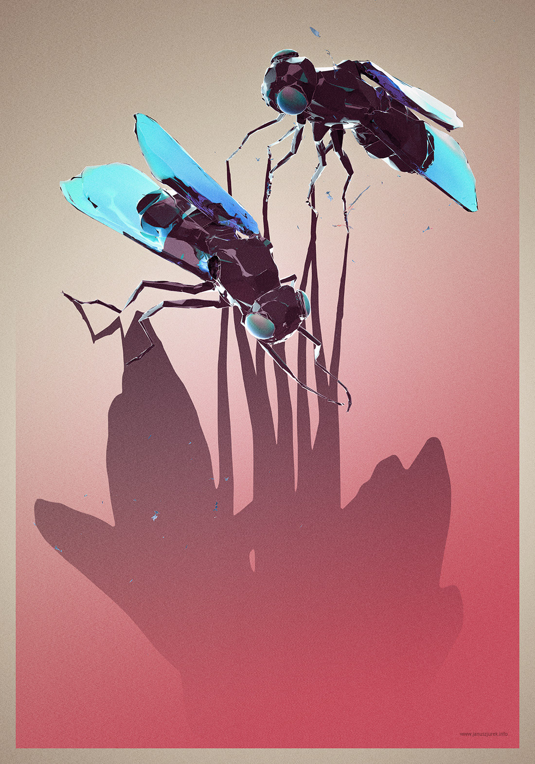 Flies poster Fly