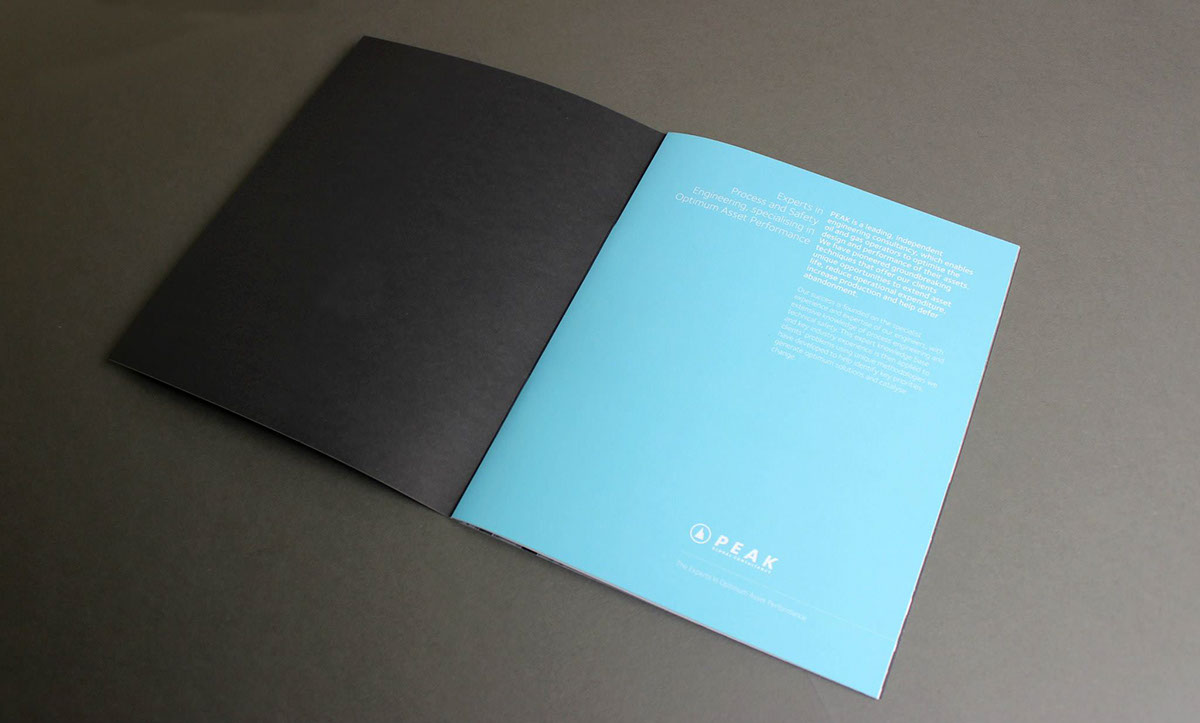 Adobe Portfolio print brand editorial brochure foil typography   GR