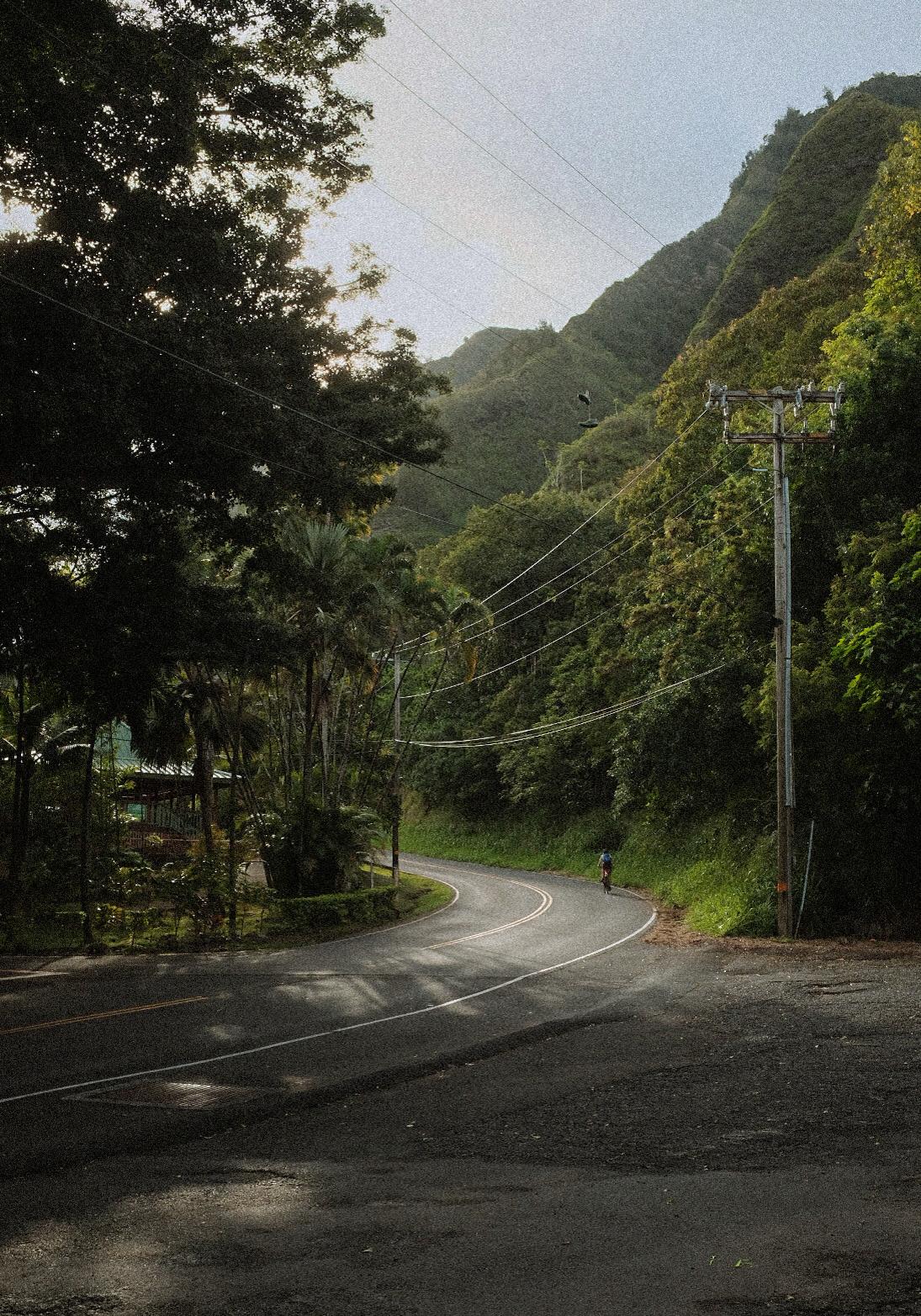 Film   fujifilm hawai HAWAII maui Nature Street usa wailuku x100f