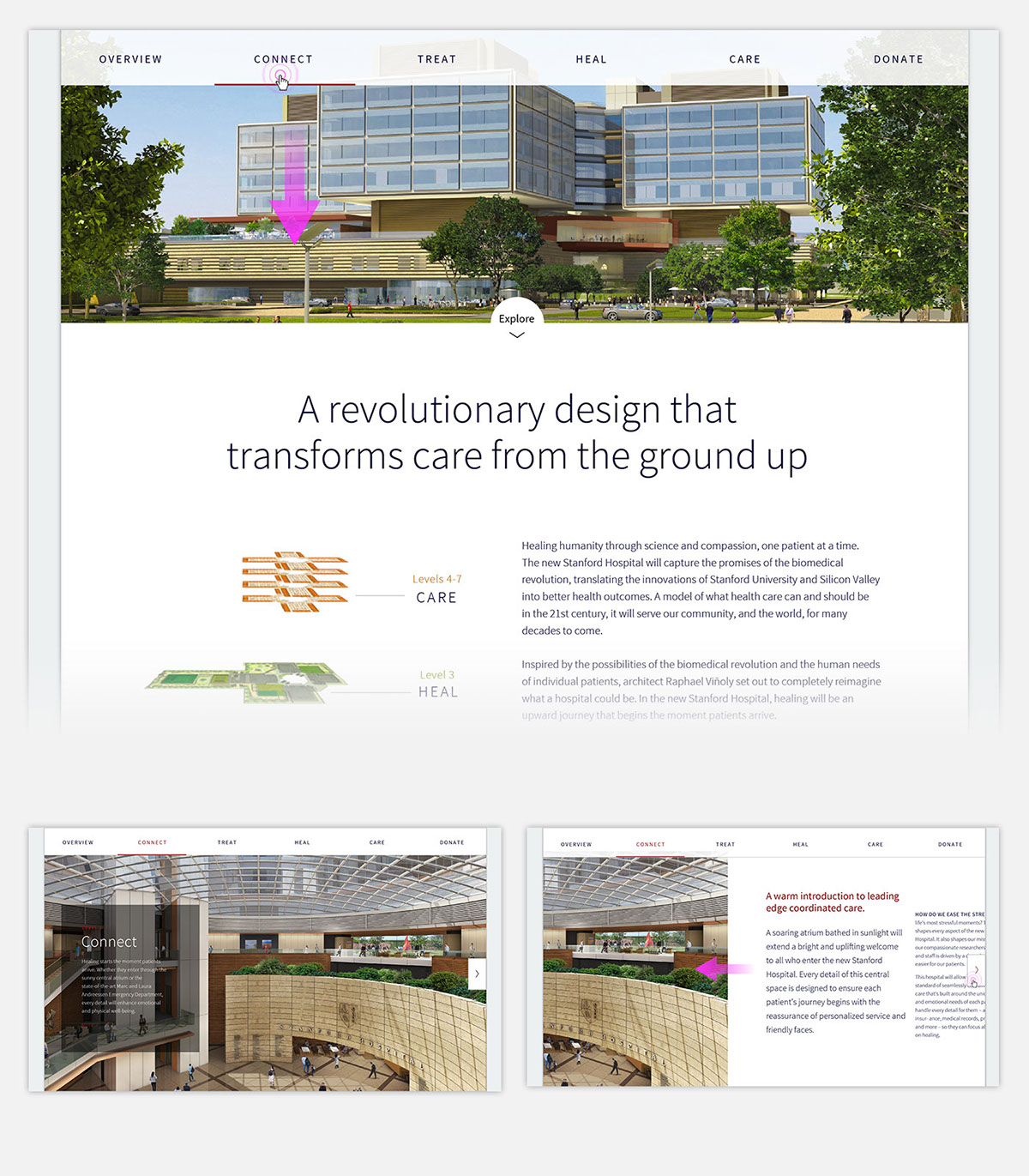UI ux Interaction design  healthcare Website wireframes Prototypes content strategy