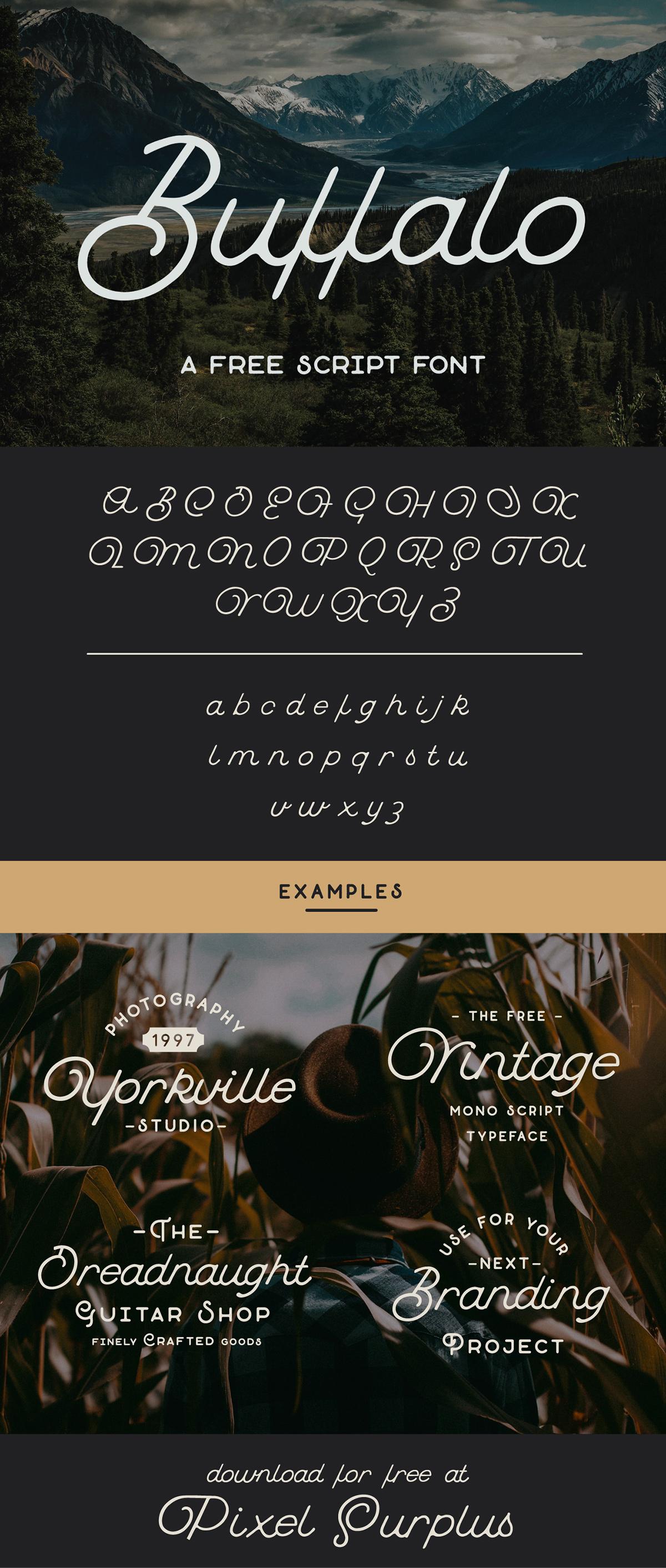 free Free font free fonts freebie freebies Script Script Font monoline monoline font font fonts vintage freebie font Display