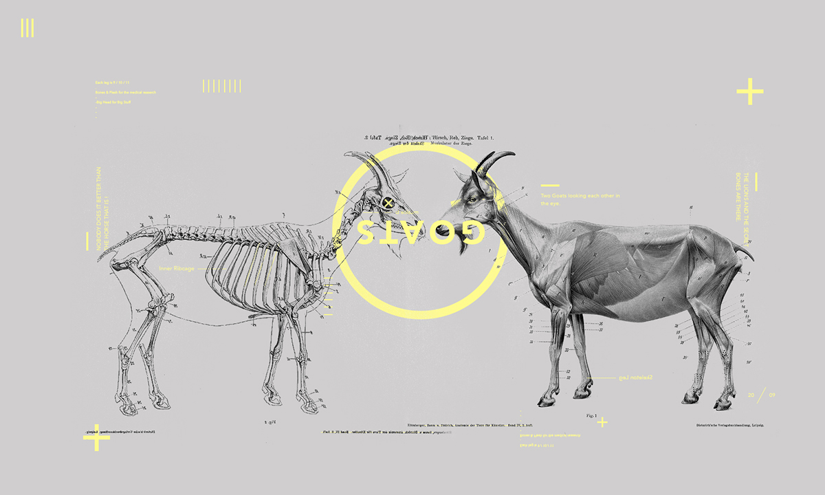 design sketch typo Space  anatomy school Work  medicin