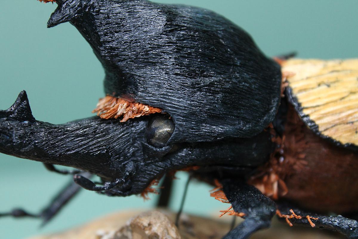 paper art paper craft paper insect insect beetle Hercules beetle paper sculpture naturalistic crepe paper