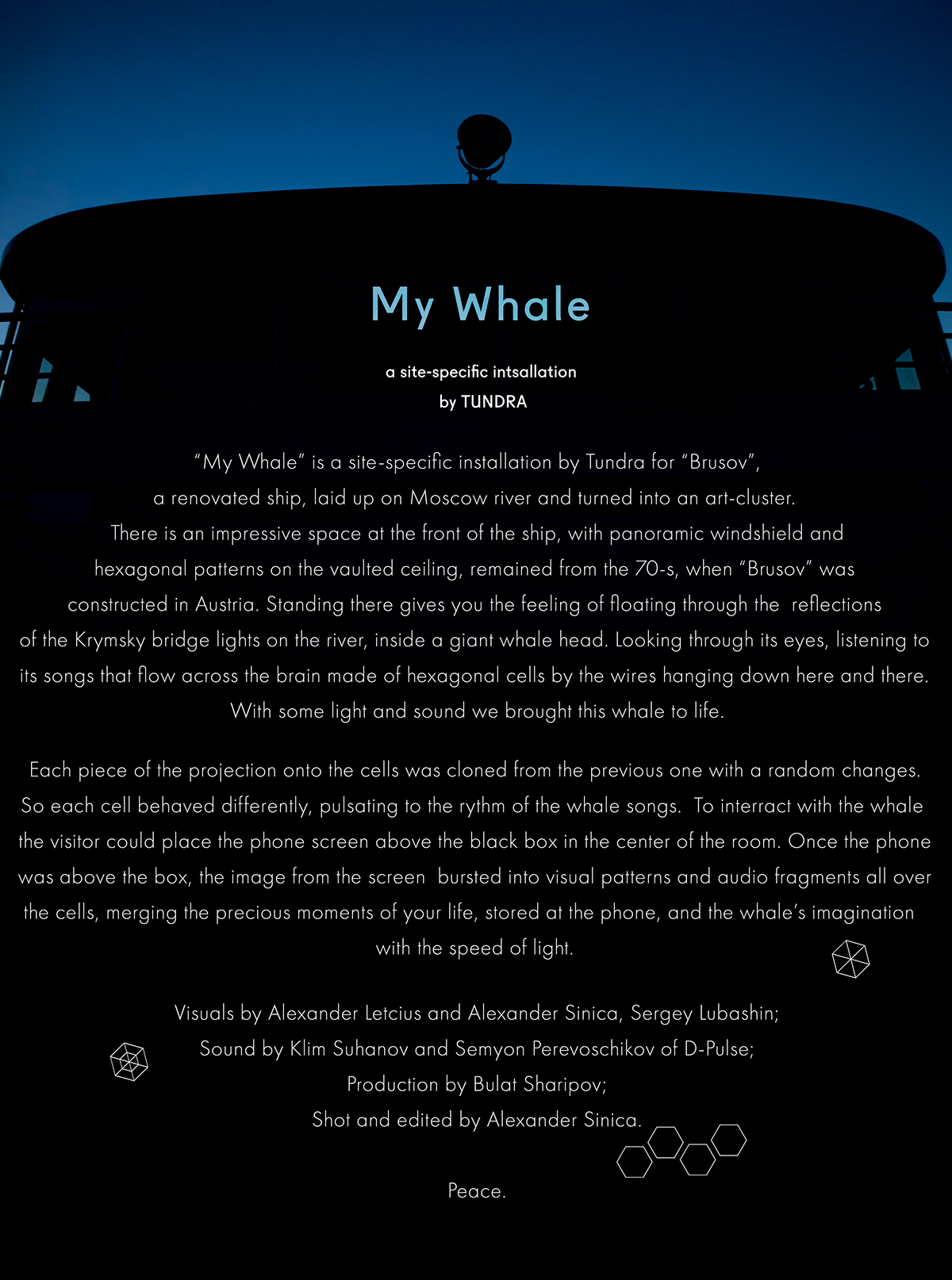 Audio visual installation projection mapping Whale visual art TouchDesigner