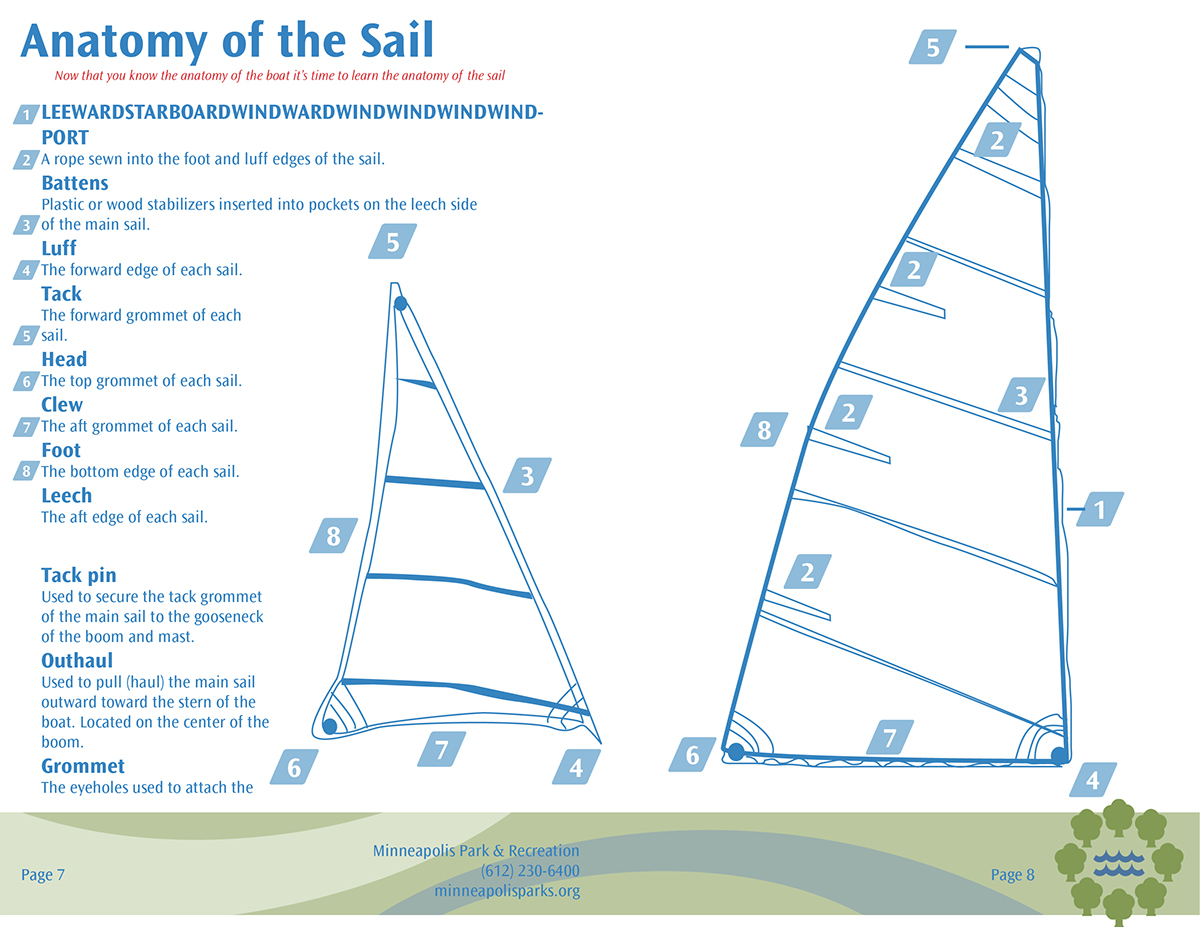 Perfect Anatomy Of A Sail Image Collection - Physiology Of Human ...