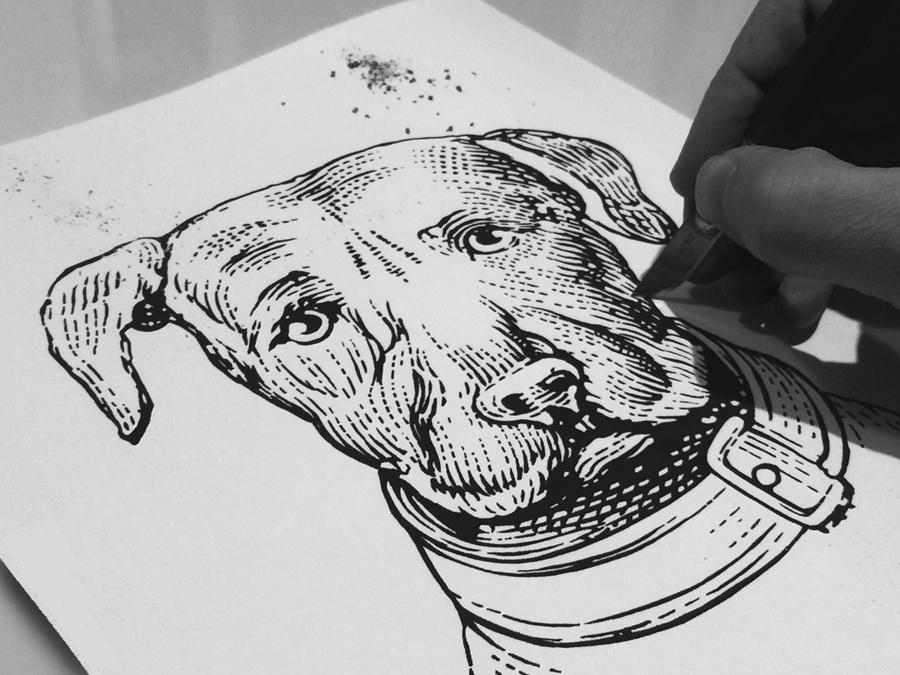 Steven Noble scratchboard woodcut engraving line art scraper board