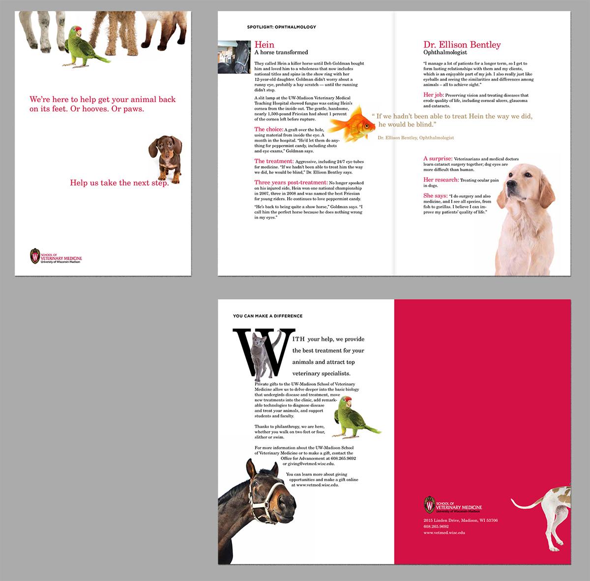 concept Philanthropy  research veterinary University