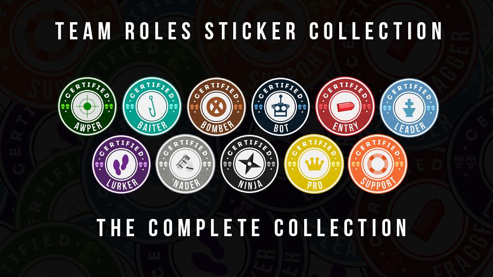 csgo,game,stickers,team roles