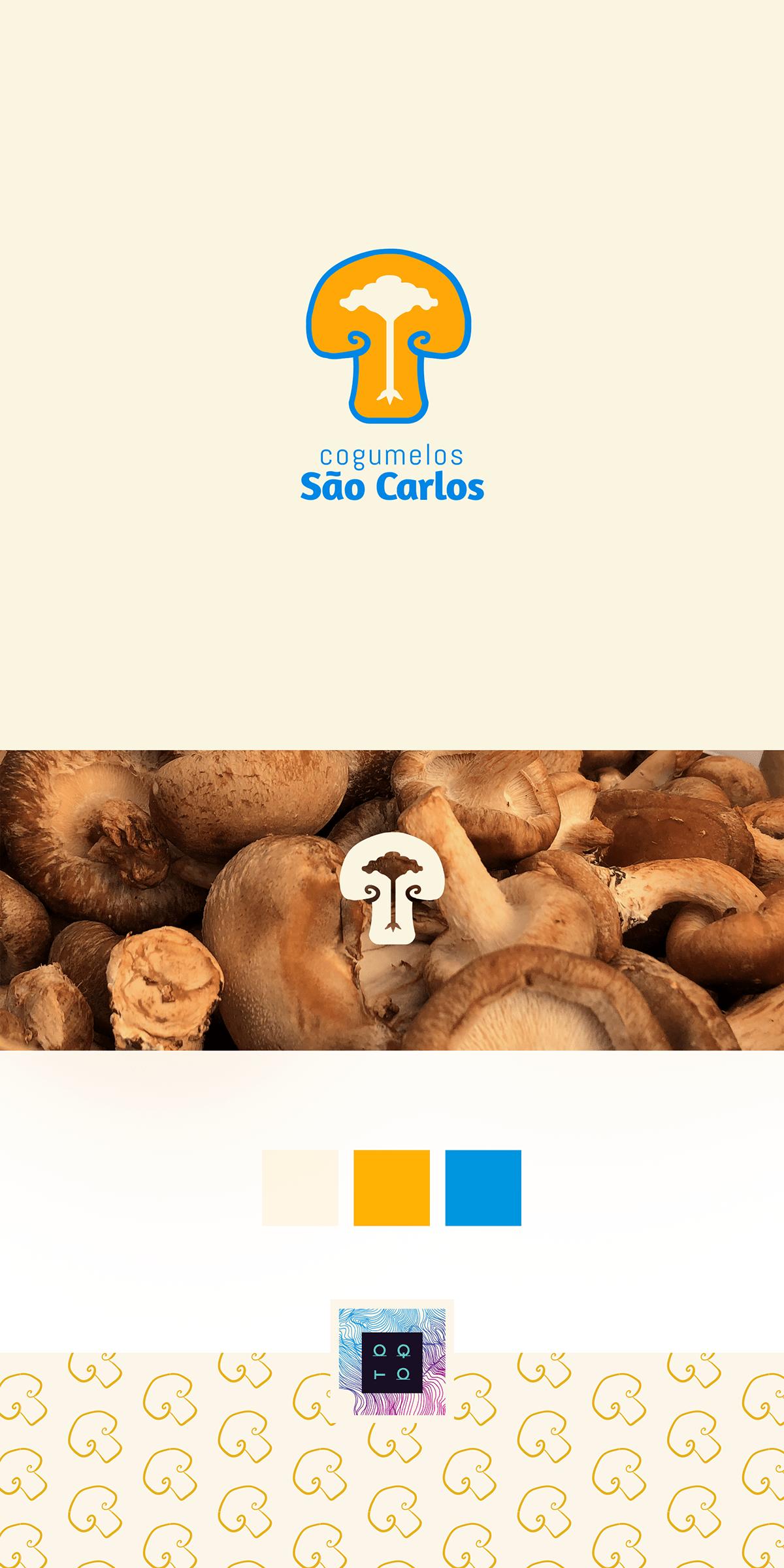 brand branding  cogumelo design Food  ID identidade visual logo mushroom Packaging