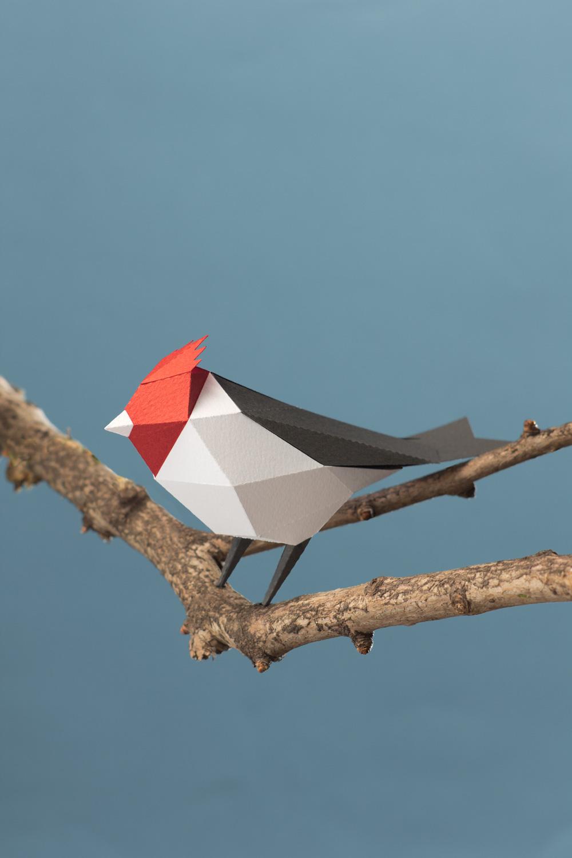 aves kit armar birds Assemble paper papercraft pattern