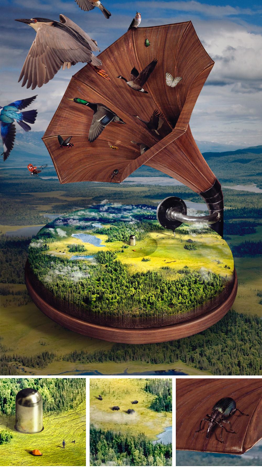 Nature music planet animals ecosystem Protect listen symphony naturaleza musica
