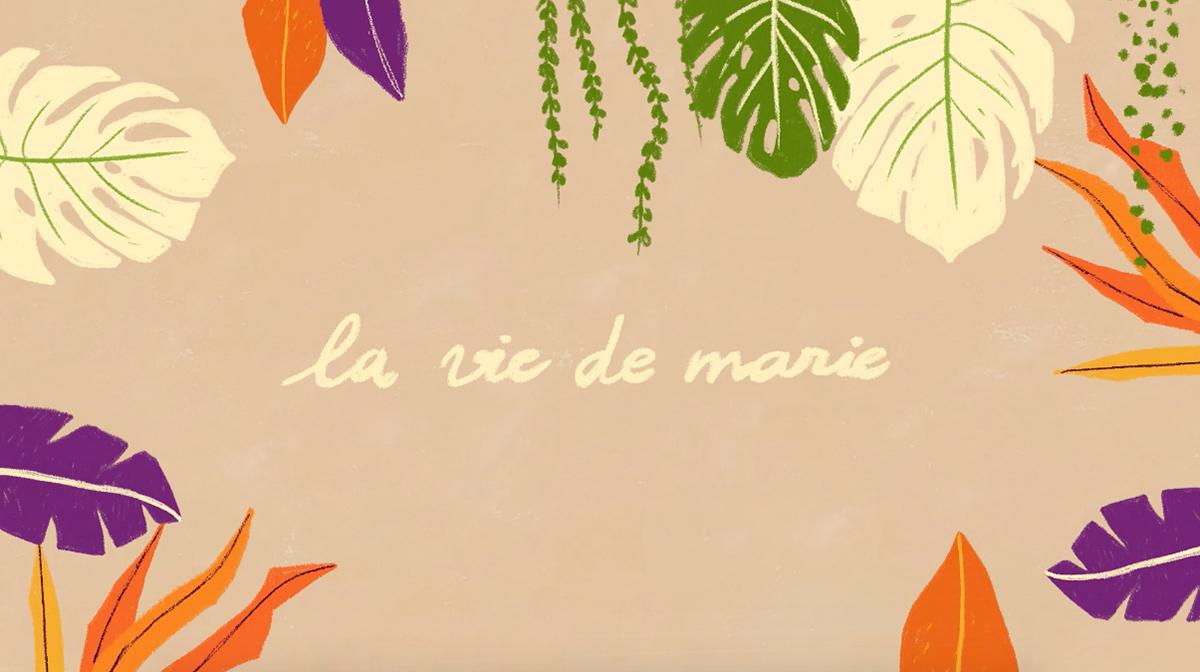animation  Cel Animation frame by frame ILLUSTRATION  la vie de marie Monstera Nature photoshop plants Succulents