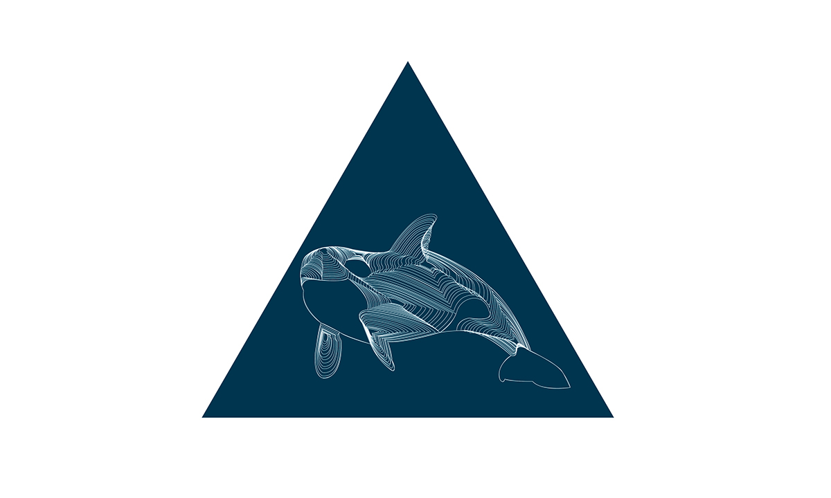 vector animals Whale see Ocean lines geometric