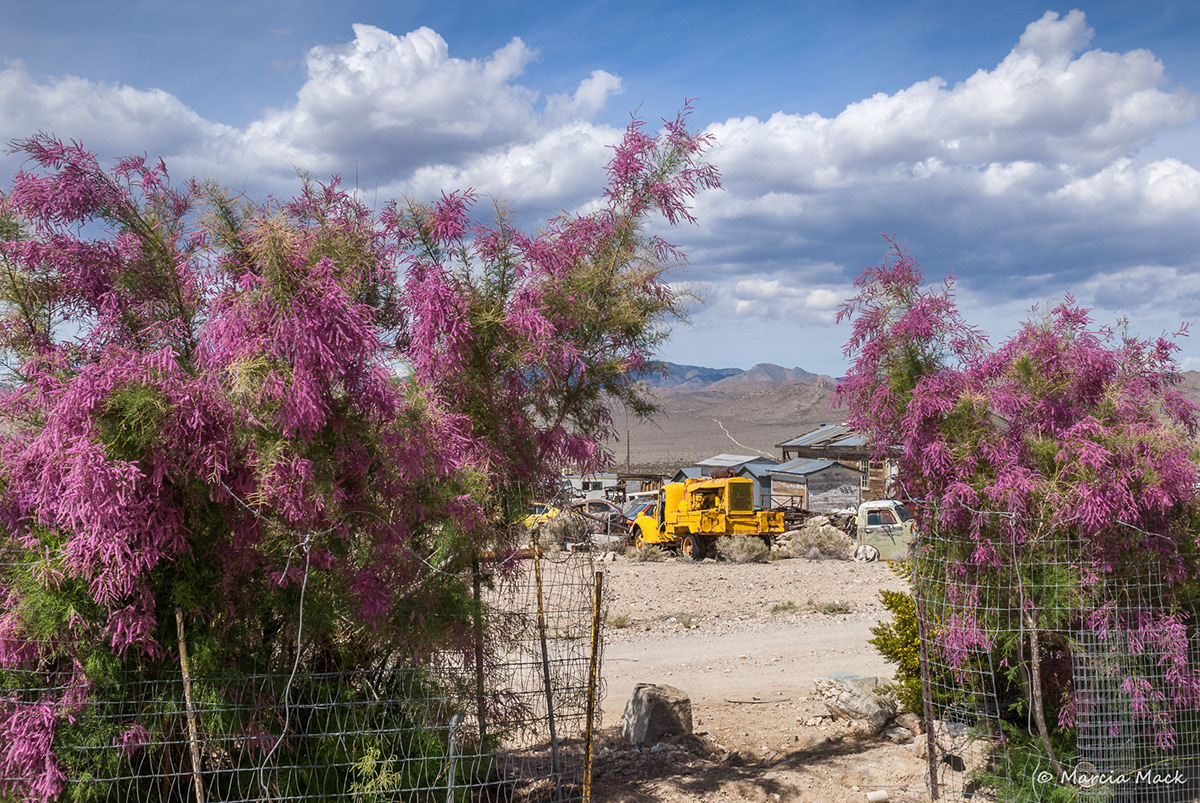 Adobe Portfolio darwin darwin california Death Valley ghost town marcia mack photograph eastern sierra Coso Mountains Mojave desert desert