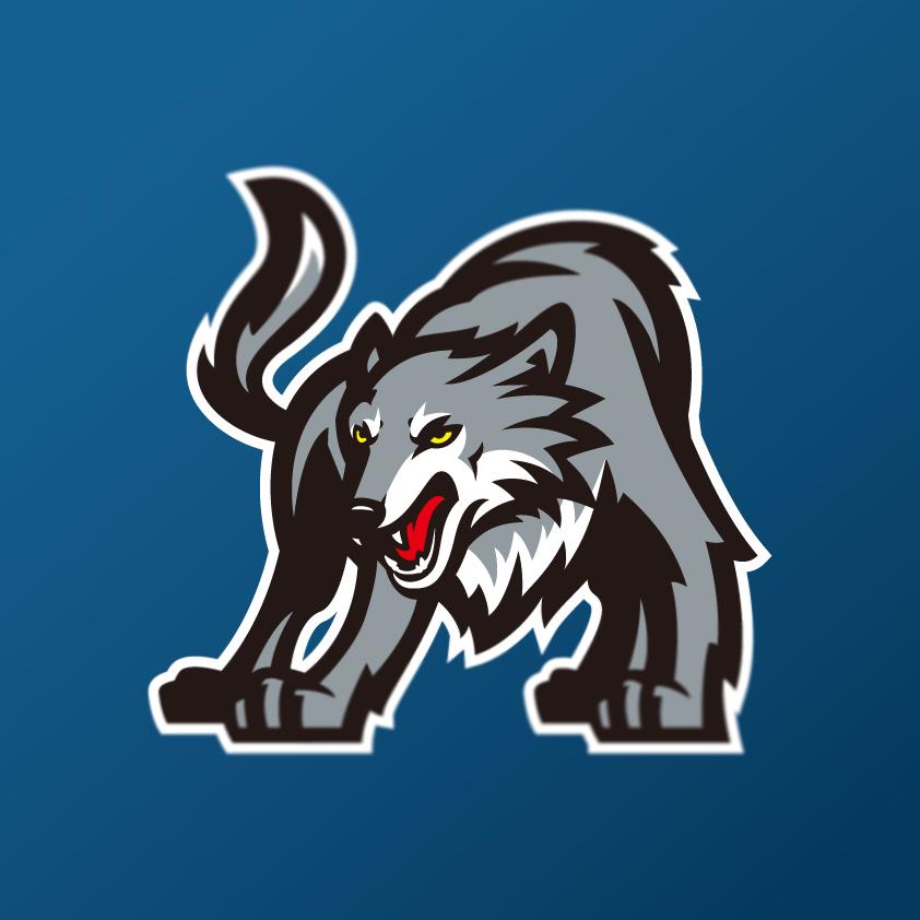 Minnesota Timberwolves: Minnesota Timberwolves Logo Concept On Behance