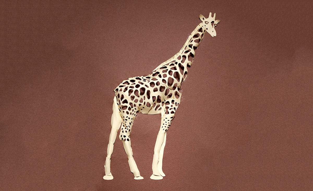 Adobe Portfolio paper craft paper engineering 3d paper paper loops paper art Paper Illustration paper animals 3d animals handmade