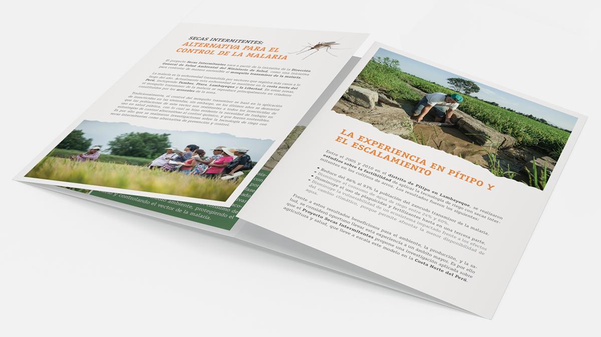 Diseño y diagramación brochure diseño Care Diseño editorial