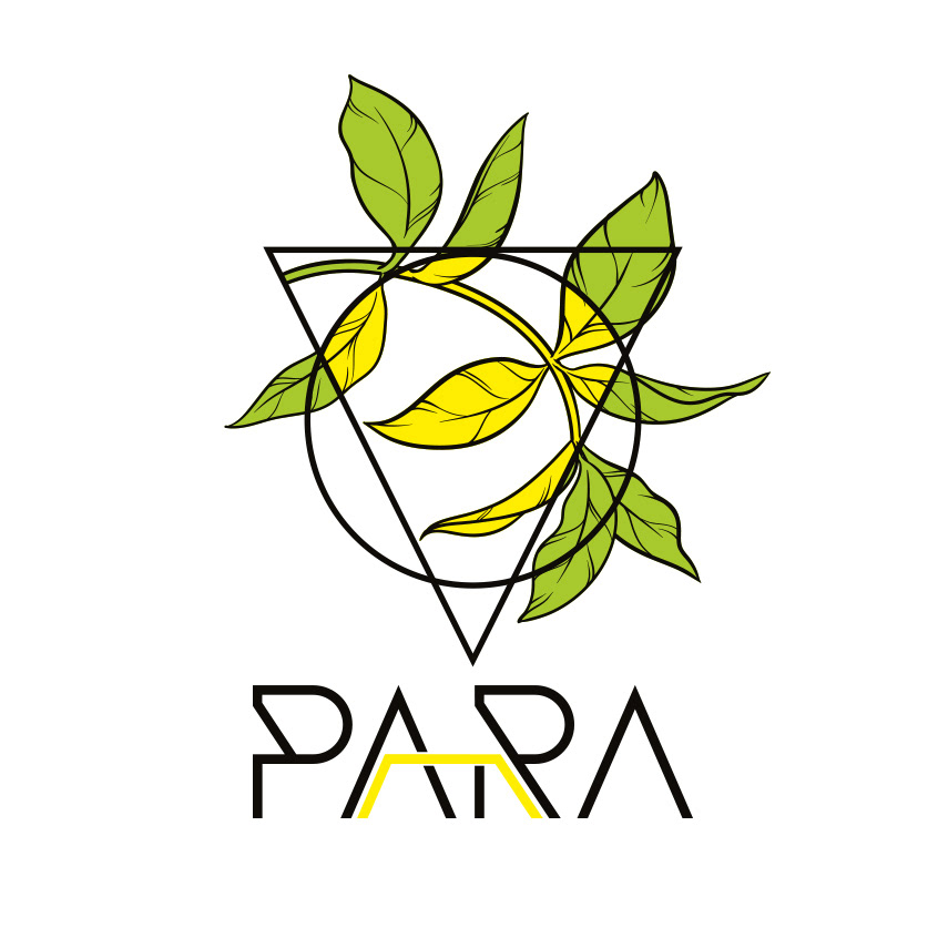 music mint yellow brand logo circle triangle logodesign Project brandidentity