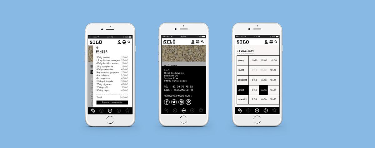 visual identity Web Design  app design organic bio delivery Ecology Food  vrac
