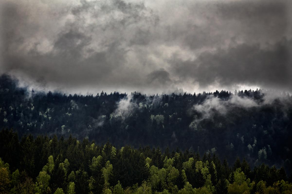 Landscape Nature mountain forest SKY cloud Bavarian Forest bayerischer wald trees jörg marx