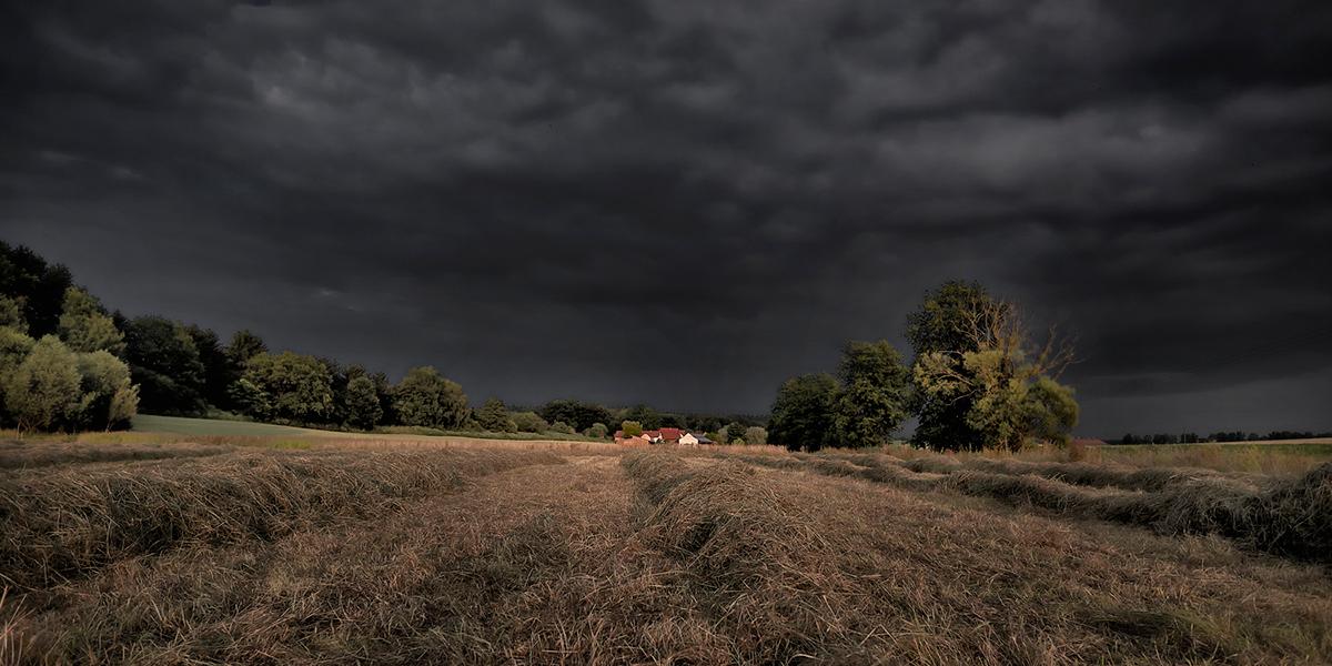 Landscape jörg marx Contaminated landscape Post-Traumatic Landscape