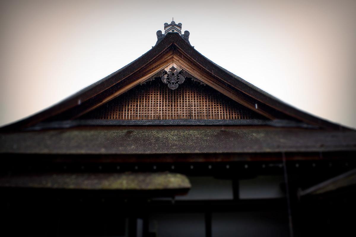 Adobe Portfolio asia buddhism japan kyoto ninna-ji temple temple zen