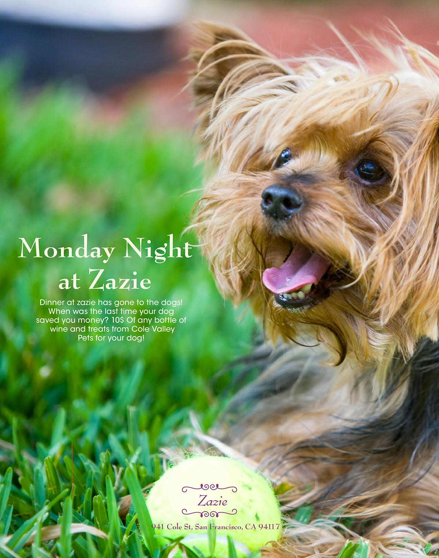 Zazie rebranding poster Booklet