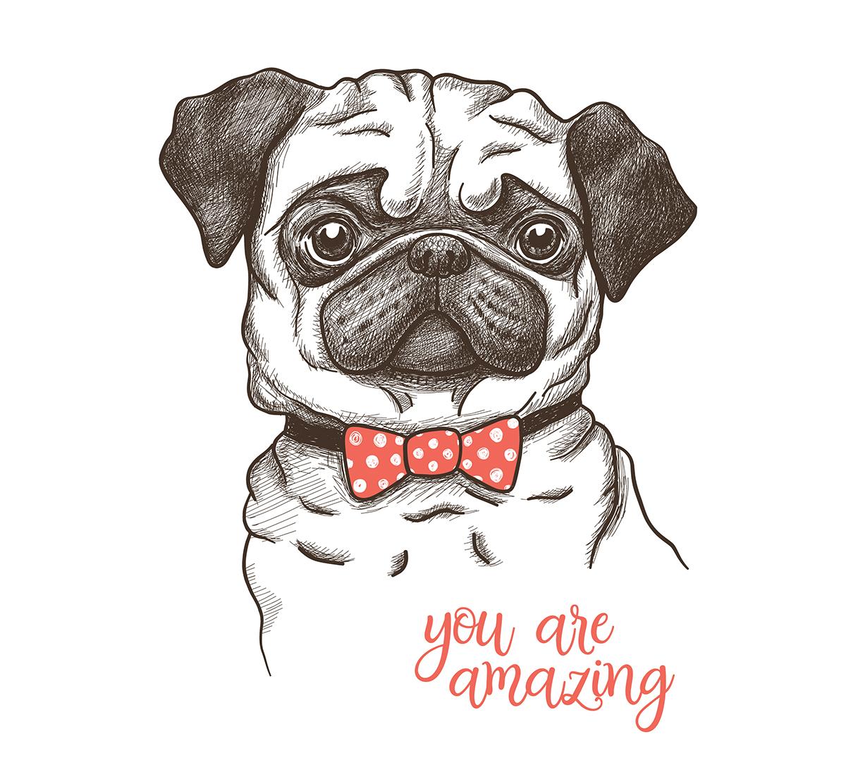 Vector Sketch Illustration Of A Pug Dog Print Design On Behance