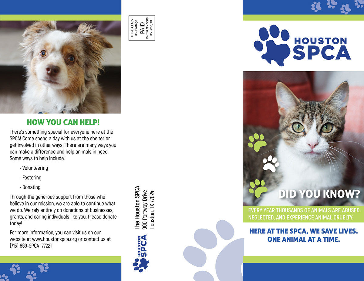 Houston Spca Non Profit Ad And Trifold On Student Show