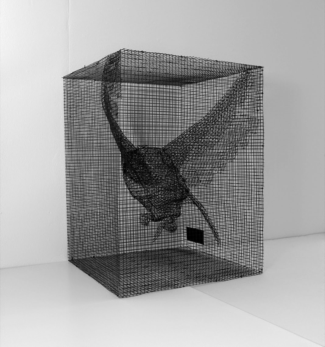 #edoardo tresoldi #streetartnews #justkidz #specialedition #edition  #sculpting #reason #bird  #mesh #transparence