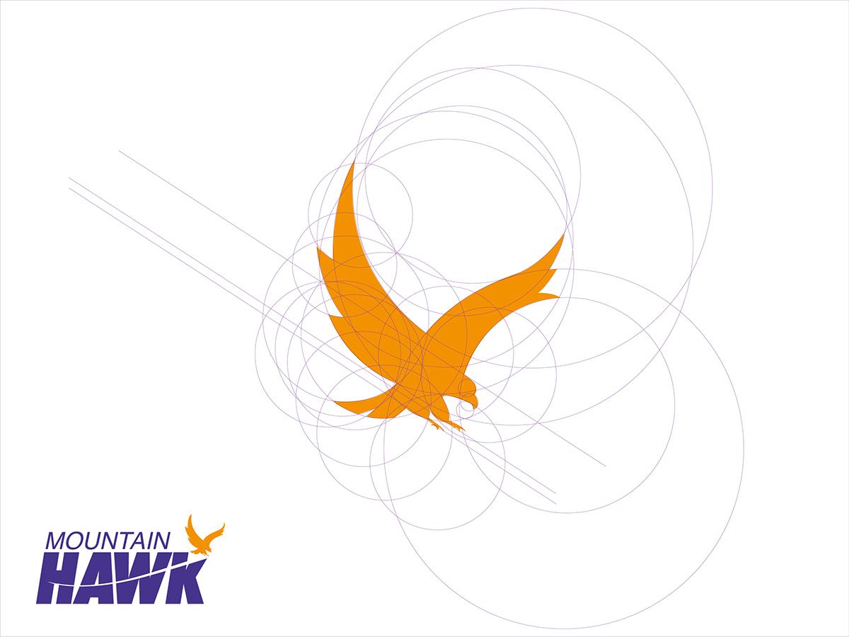 Fedex mountain hawk on behance biocorpaavc Choice Image