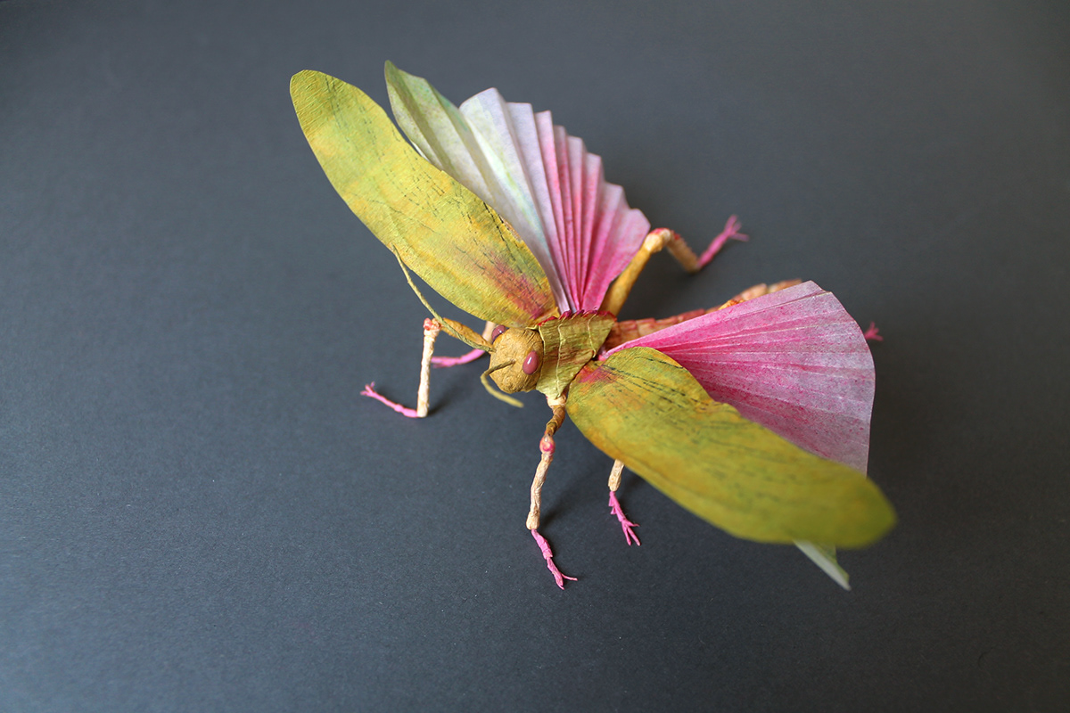 crepe paper entomology Insects paper paper art paper engineering paper sculptures papercraft vegan taxidermy Grasshopper
