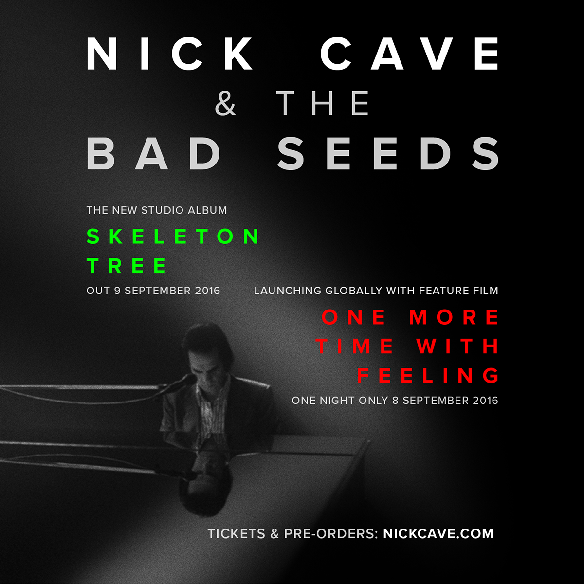 Adobe Portfolio graphic design  nick cave music typography   poster