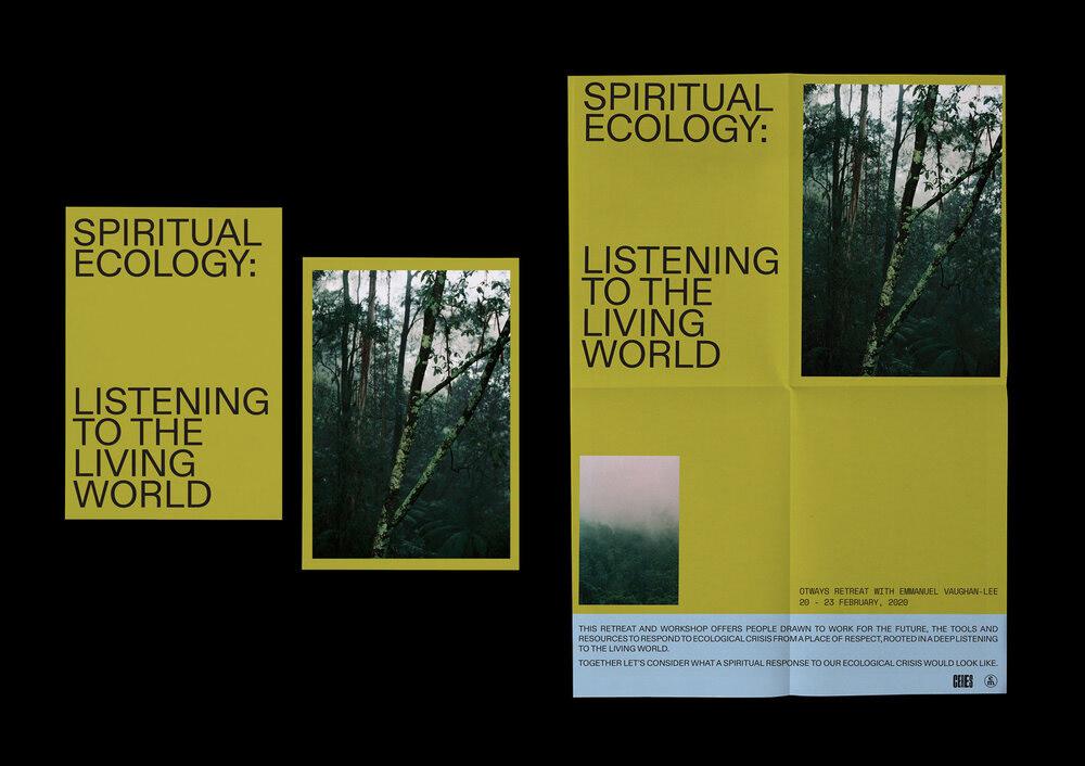 Image may contain: tree and screenshot