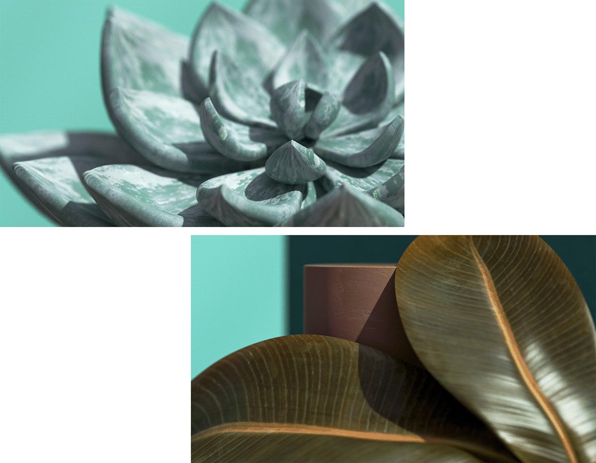 3dart,c4d,design,ILLUSTRATION ,plants,photoshop,CGI,setdesign,3D,ArtDirection