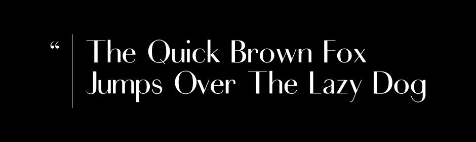 Didot sans serif serif font typography   freebie hellofont Fontself
