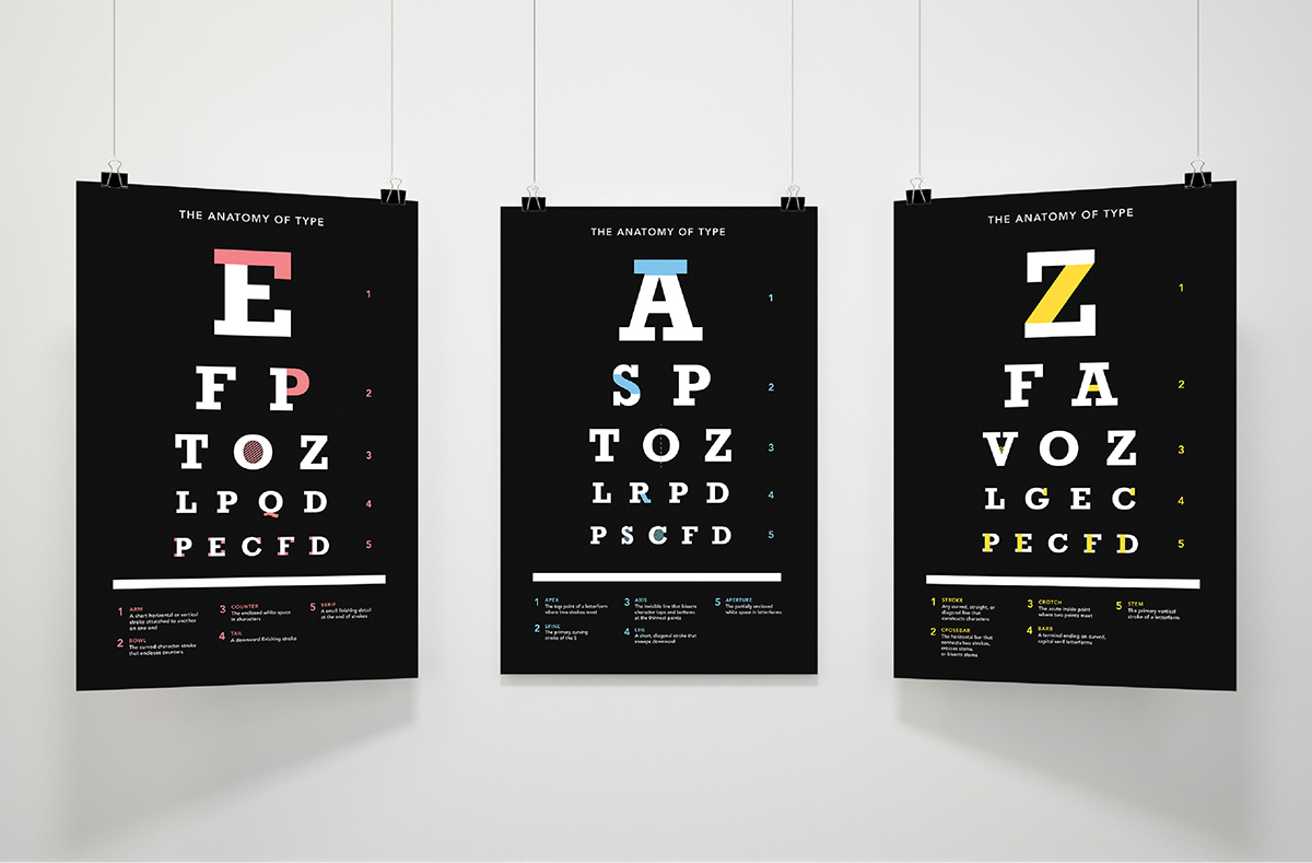 Type Anatomy Poster Series on Behance