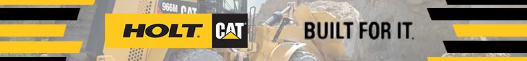 holt Cat banner graphic design
