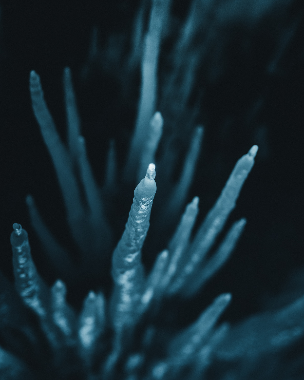 ice glacier Arctic winter blue frozen iceland Greenland cold
