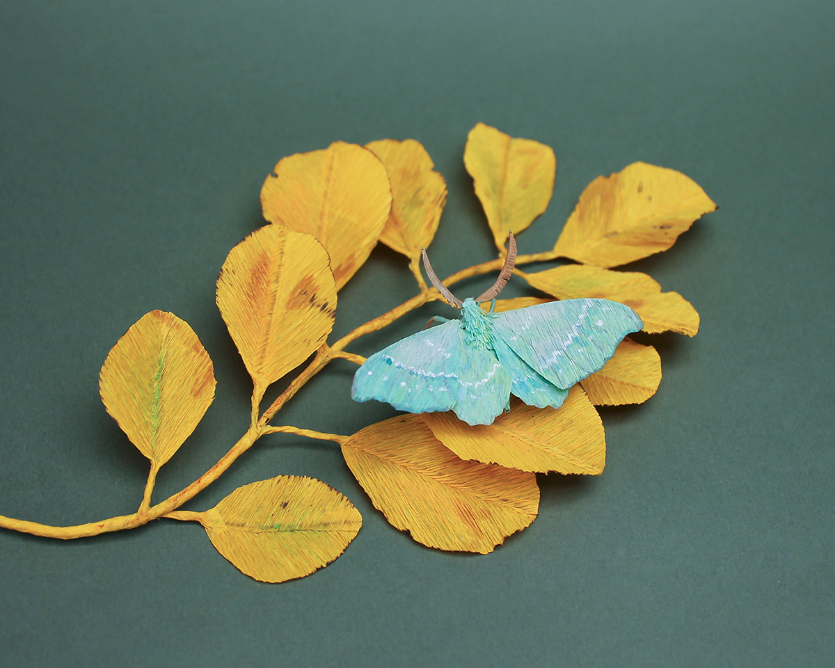 paper art sculptures crepe paper moths butterflies animals Nature naturalistic paper craft