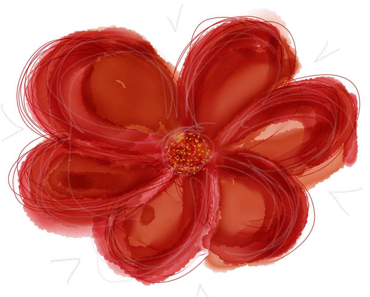Adobe Portfolio,digital painting,vector drawing