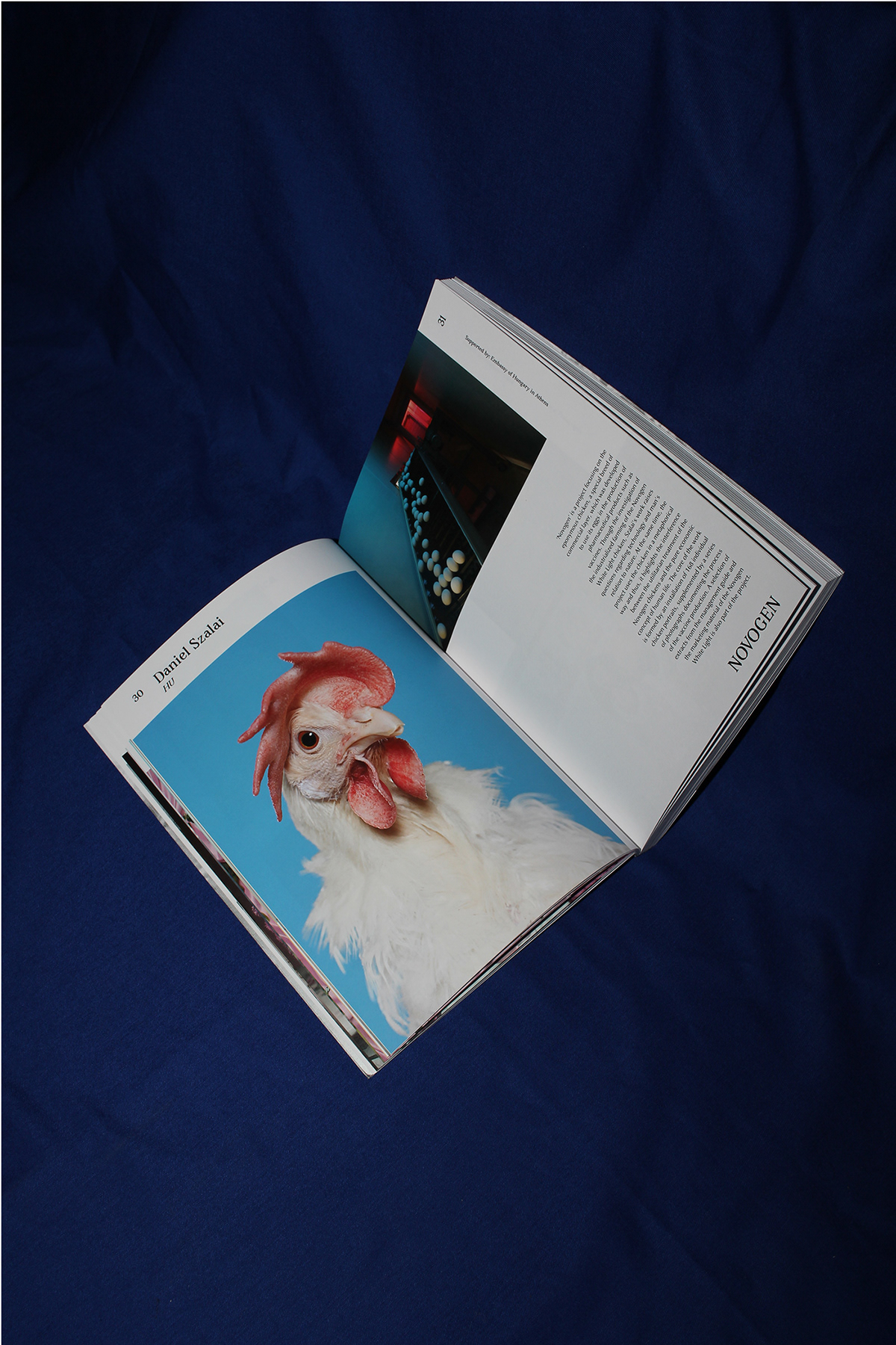 book design Catalogue Exhibition  publication silver art direction  Athens Photo Festival editorial design  graphic design  matina nikolaidou